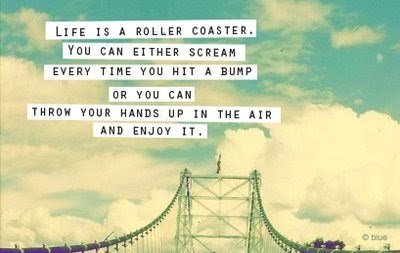 roller coaster quotes